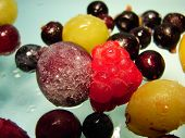 Berry Allsorts