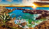 Nature Scenic Seascape In Canary Island.travel Adventures Landscape.tenerife Island Scenery. poster