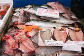 Tokio-Fischmarkt