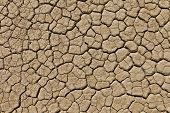 Dry Desert Drought