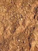 Dry Agricultural Brown Soil