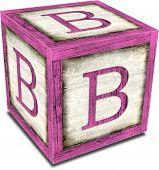 Alpha Block B Pink