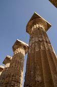 Columns In Selinunte