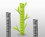 picture of amortization  - green spring with green leaves around  - JPG