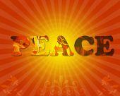 Peace  Sunrays