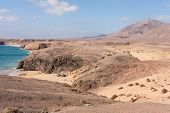 picture of papagayo  - El Papagayo on Lanzarote on the Canary Island - JPG