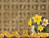 stock photo of narcissi  - Vintage postcard for invitation with bunch of yellow narcissi - JPG
