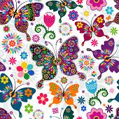picture of butterfly  - Seamless spring white floral pattern with colorful butterflies and flowers  - JPG
