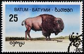 A stamp printed in Batumi shows bison