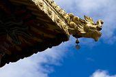 Golden eave