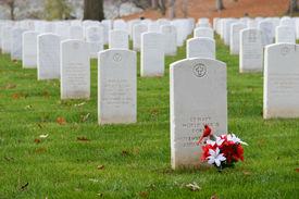 foto of headstones  - Headstones in Arlington National Cemetery near to Washington DC  - JPG