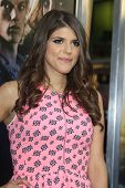 LOS ANGELES - AUG 12:  Molly Tarlov at the