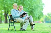 Elderly people reading a book seated on bench in park