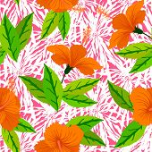 Tropical pattern with orange hibiscus flowers
