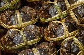 picture of hairy  - Hairy crabs in china - JPG