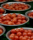 Bowls Of Cherry Tomato