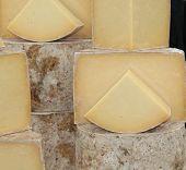 Round Cheeses.