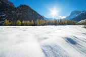 Alpine mountain landscape on a sunny day with larch trees in the snow. Snow fall early winter and la