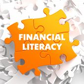 Financial Literacy on Orange Puzzle.