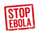 Red Stamp on a white background - Stop Ebola