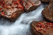 Water Cascade