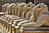 Karnak temple in Egypt