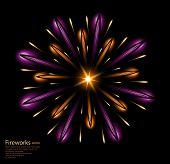fireworks violet flower purple vector