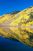 Aspens On Crystal Lake Colorado