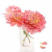 picture of bouquet  - Summer dahlia bouquet in a glass jam jar bouquet - JPG