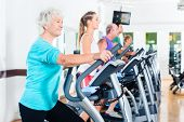 picture of elliptical  - Group with young and Senior women and men on elliptical trainer exercising in gym - JPG