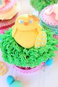 picture of baby chick  - An Easter cupcake with a baby chick made out of fondant - JPG