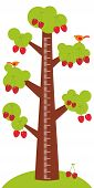 picture of measuring height  - Big tree with green leaves and ripe red cherry on white background Children height meter wall sticker kids measure - JPG