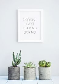 stock photo of fuck  - MOTIVATIONAL POSTER WITH SUCCULENTS IN CONCRETE POTS  - JPG