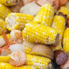 stock photo of shrimp  - Close - JPG