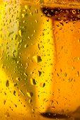 Cup of beer closeup
