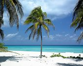 stock photo of greater antilles  - Varadero - JPG
