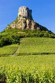 La Roche de Solutre with vineyards, Burgundy, France