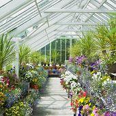 Gewächshaus, Birr Castle Gardens, County Offaly, Irland