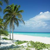 picture of greater antilles  - Varadero - JPG