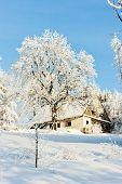 cottage in winter, Jeseniky, Czech Republic