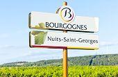 Nuits-Saint-Georges, Burgundy, France