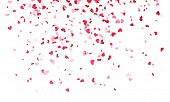 Pink hearts petals falling on white background for Saint Valentine Day greeting card design. Flower  poster