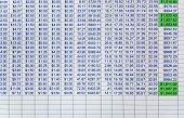 Kalkulationstabellendaten auf einem Computer-Bildschirm.