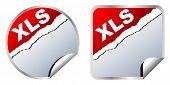 (raster image of vector) xls format