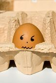 Scared egg in a box