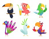 Tropical Parrots Characters. Feathered Exotic Macaw Birds Pets Colored Wings Funny Exotic Flying Ara poster