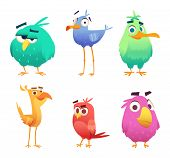 Cartoon Funny Birds. Faces Of Cute Animals Colored Baby Eagles Happy Birds. Vector Clipart Character poster