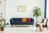 Mid-century Modern Chair With A Blanket And A Large Sofa With Colorful Cushions In A Spacious Living poster