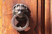 Постер, плакат: Дверные молотки Лев на старые двери