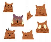 Orange Tabby Cat In Many Funny Emotions poster